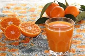 mandarin-juicew