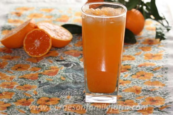 mandarin-vodka-tonicw