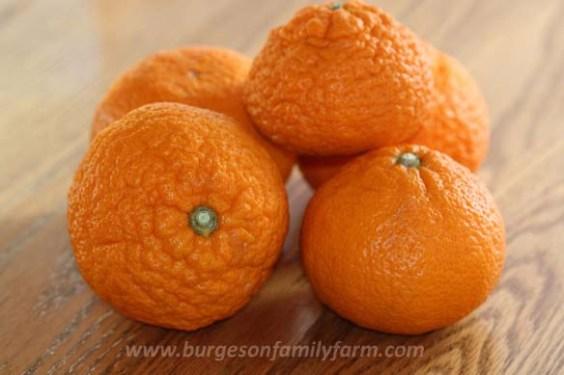 ugly-mandarin-stackw