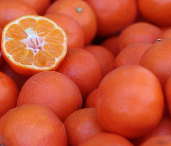 Algerian clementine trimmed