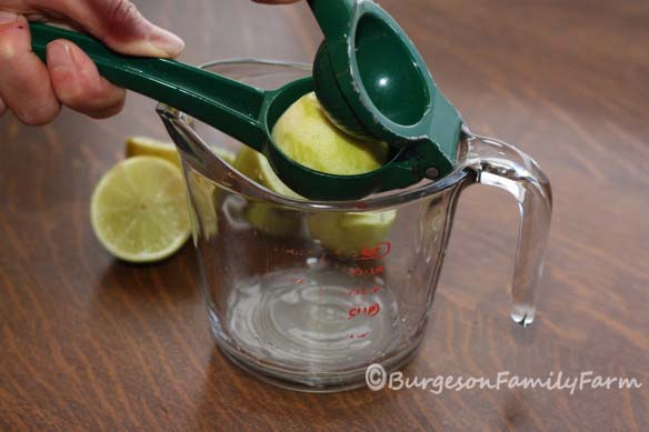 juicing-limes