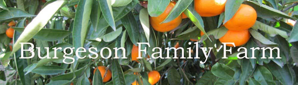 Burgeson Family Farm