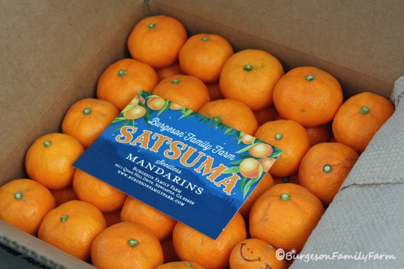 filled box of mandarins