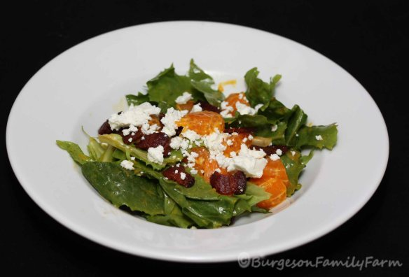 mandarin bacon salad recipe photo2